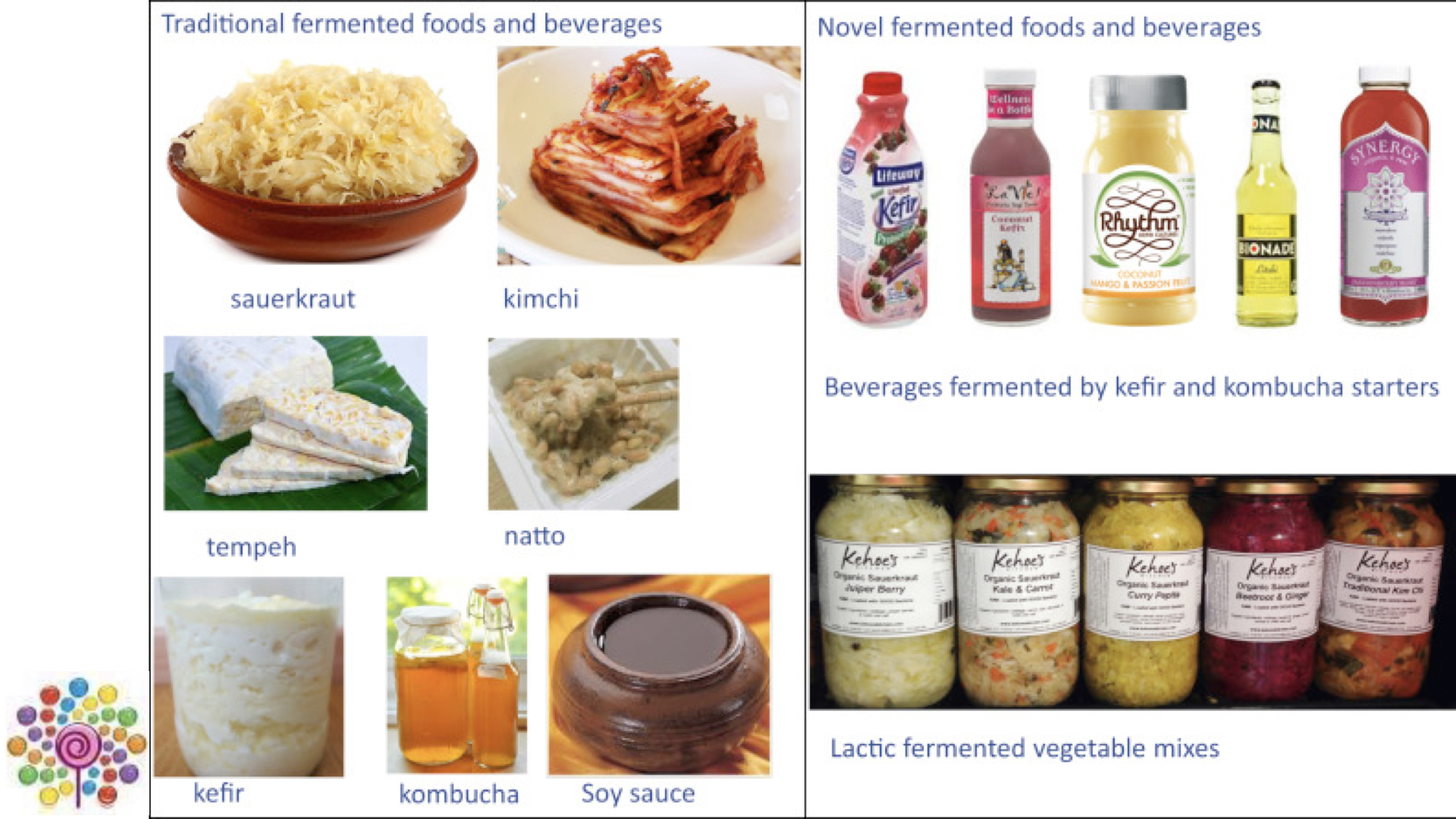 Examples of fermented foods and probiotic fermented foods.
