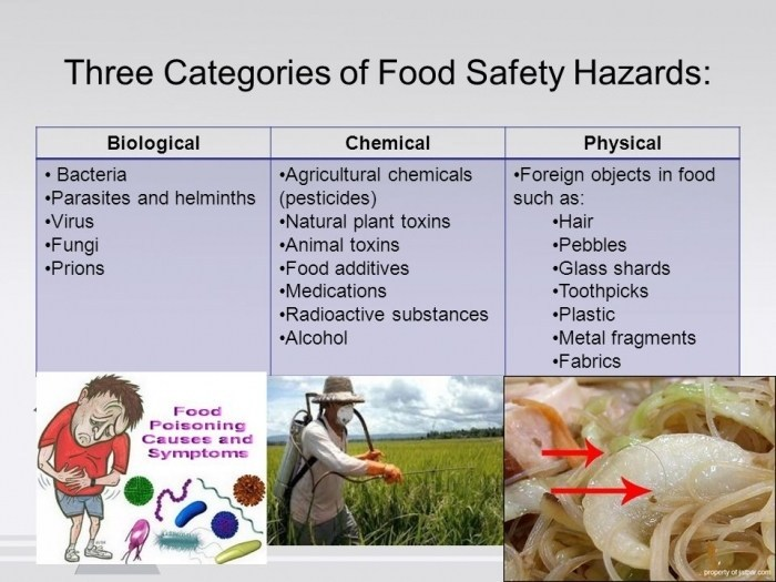 Three types of food safety hazards.